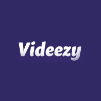 video-videezy